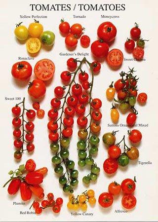 Préparez les légumes correctement et maintenez le goût La